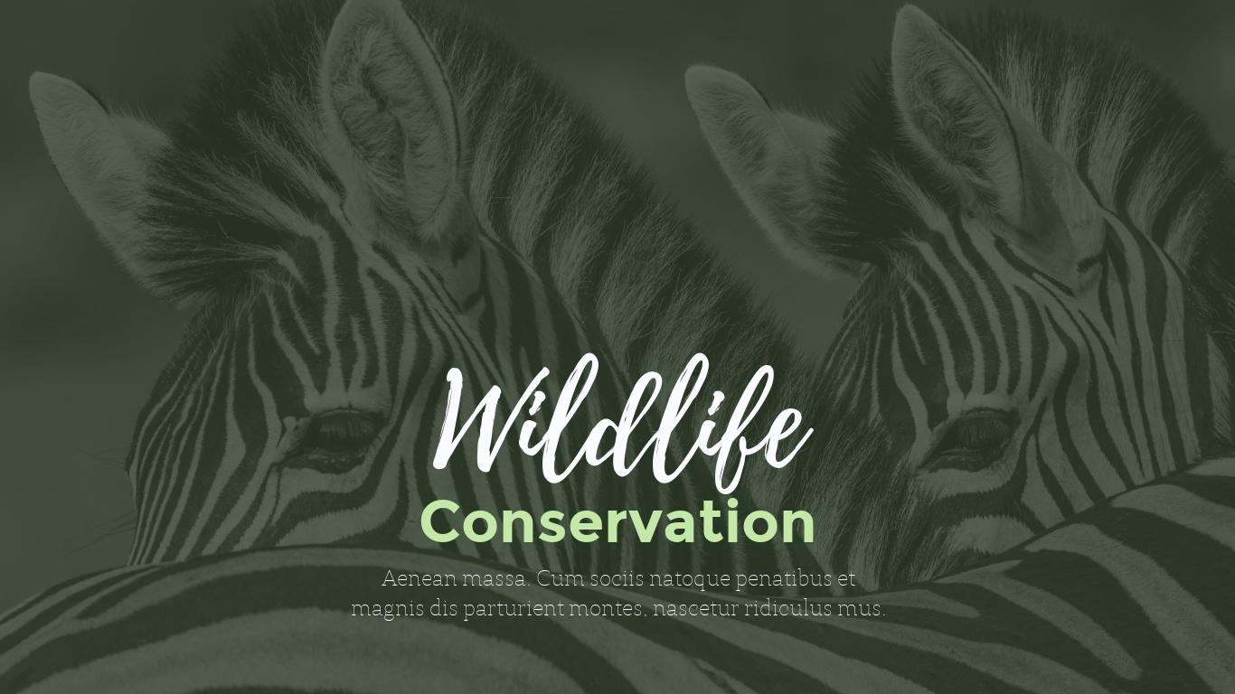 Wildlife Conservation - Presentation Template